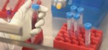 """Une nouvelle molécule  """"prometteuse"""" contre la douleur"""