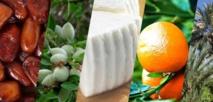 Les produits locaux mis à l'honneur à Al Hoceima