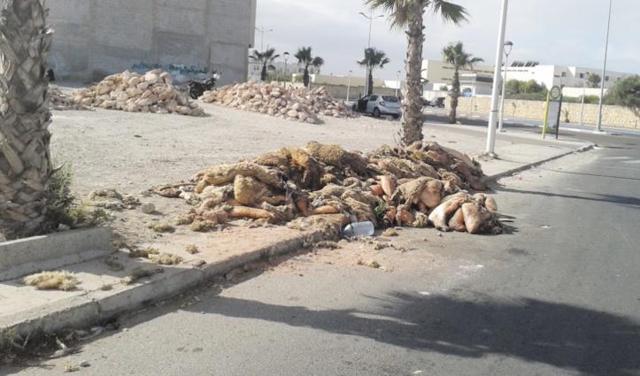 Des pratiques condamnables à l'occasion de l'Aïd à Essaouira