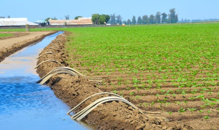 La surface agricole utile au niveau national s'élève à 8,7 millions d'hectares