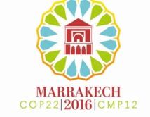 """Pour le Danemark, la COP22 à Marrakech suscite """"""""de grandes attentes"""""""