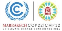 La COP22, une occasion pour faire entendre la voix de la société civile internationale