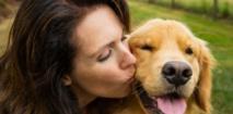 La sociabilité du chien serait génétique