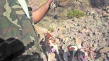 Ouverture de la saison de la chasse