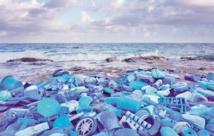 Du déchet sur la plage à l'œuvre d'art