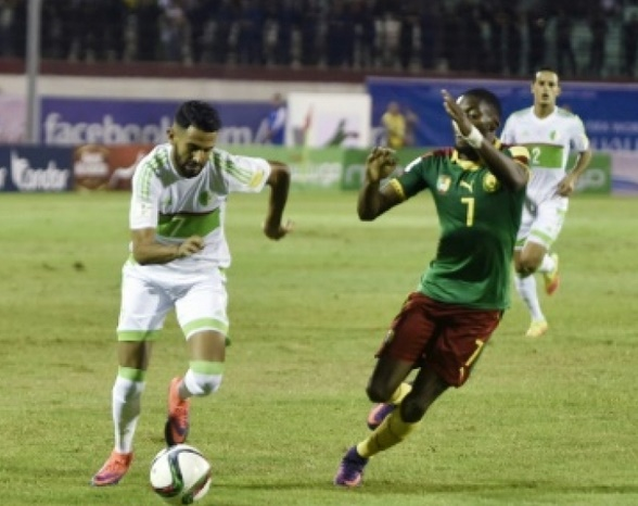 L'Algérie vendange