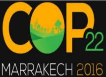 Au jour le jour : COP22 ou la frénésie médiatique