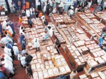 La pêche illicite entre la puissance des lobbies et l'impuissance des contrôleurs : La gageure