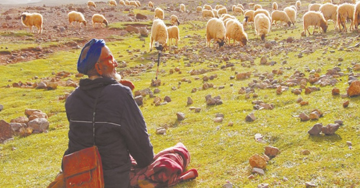 Le style de vie nomade sous les projecteurs de la FAO