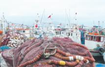Razzia effrénée en mer