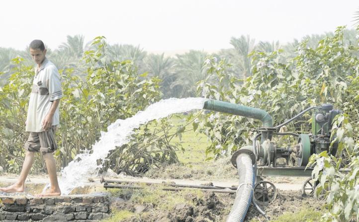 Les eaux usées, une alternative contre les pénuries d'eau dans le secteur agricole