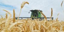 La campagne agricole s'annonce  sous de bons auspices