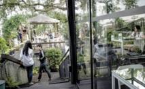 Au cœur de Bangkok, la résistance du poumon vert