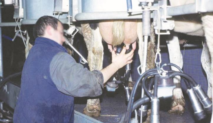 La filière lait double son offre nationale
