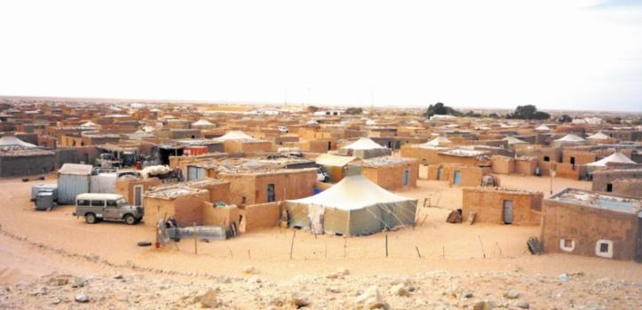 Les médecins cubains boudent le Polisario