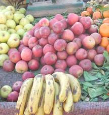 Grève des transporteurs : Les producteurs des fruits et légumes appellent à «des solutions rapides»