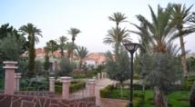 """""""Cultivons nos jardins"""" Rencontre écologique à Essaouira"""