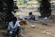 Le chef des Tigres tamouls encerclé : 6.500 Sri-lankais tués dans les combats