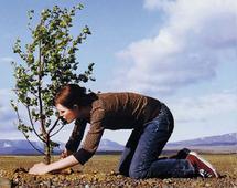 """Le programme """"Plantons pour la Planète"""" s'intéresse au Royaume : Participation du Maroc au Prix « Terre de femmes »"""