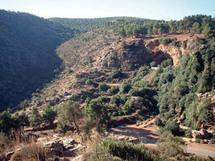 Le  Maroc dispose de la plus ancienne et importante collection de parures préhistoriques