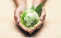 Célébration de la Journée mondiale de l'environnement dans un contexte difficile