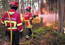Un gigantesque incendie de forêt au Portugal