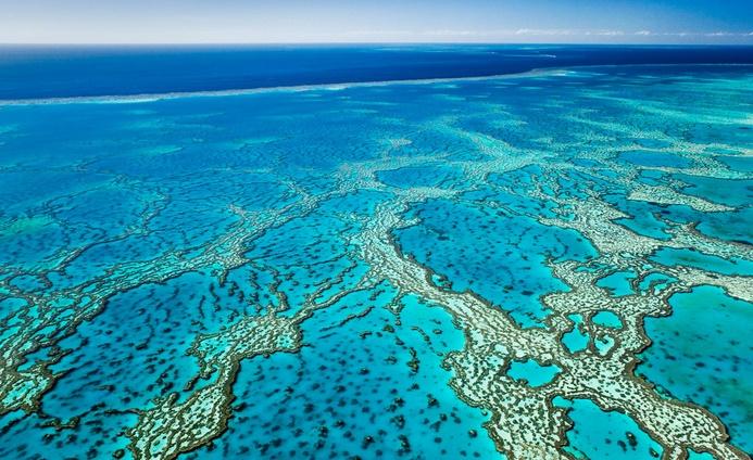 La valeur de la Grande barrière de corail en Australie