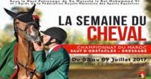Rabat à l'heure de la 33ème édition de la Semaine du cheval