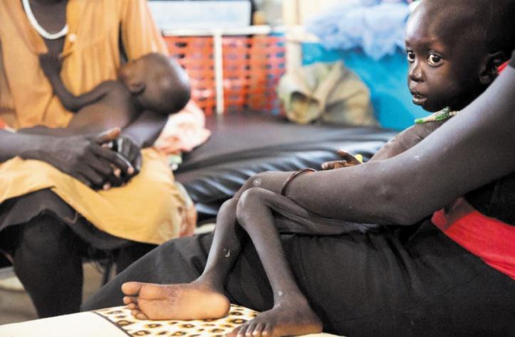 Seuls le Maroc, la Tunisie et l'Algérie ont atteint un faible niveau de la faim