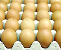 Alimentation : comparer le «bio» et le «non bio» n'a pas de sens