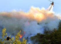 Incendies en Grèce  : Athènes sous la menace des feux
