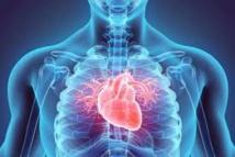 Nouvelle technique pour détecter une maladie  cardiovasculaire