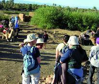 L'amélioration des quelques indicateurs ne doit pas dissimuler la réalité :  Le développement  touristique  requiert une nouvelle approche