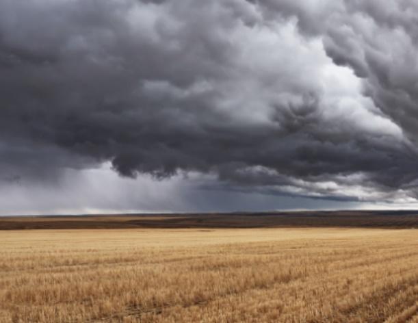 Le changement climatique va réduire les rendements agricoles