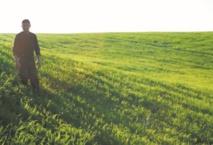 Meknès abritera en septembre un symposium international sur l'agriculture de conservation