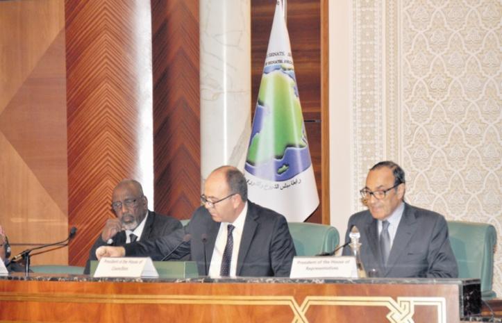 Habib El Malki : L'Afrique et le monde arabe peuvent devenir ensemble une puissance économique émergente
