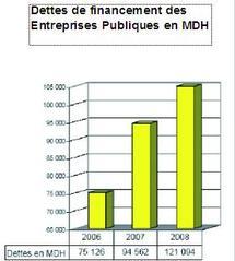 Rapport sur le secteur des établissements et entreprises publics : 111 milliards d'investissements en 2010