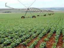 Agriculture : le virage
