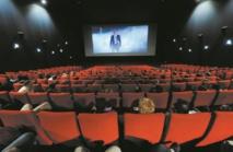 Le cinéma en fête à Marrakech