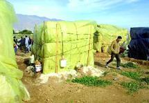 Dix ans après les évènements racistes d'El Ejido : La situation des travailleurs marocains reste précaire