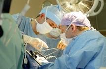 Greffe d'organes au Maroc : Appel au développement de la recherche scientifique