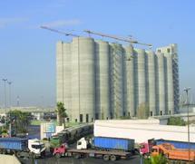 Appels d'offres lancés par l'ONICL pour l'importation de blé tendre : Des droits de douane à 45% pour le contingent américain
