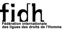 La  FIDH dénonce la planification de massacres par des forces de sécurité congolaises