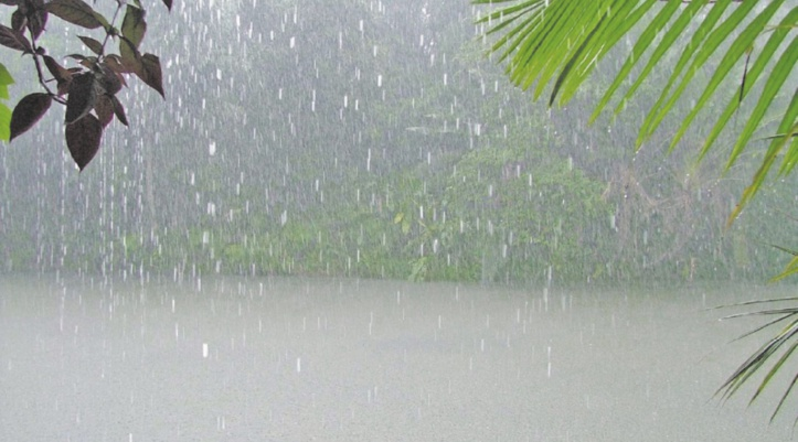 """La pluviométrie frôle """"la panne sèche''"""