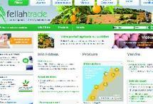 Le Crédit agricole lance son nouveau portail