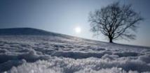 Doublement des chutes de neige en Alaska