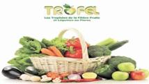 9ème édition des TROFEL à Agadir