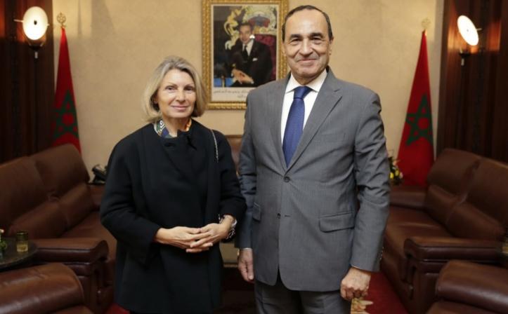 Le président de la Chambre des représentants reçoit l'ambassadrice d'Italie
