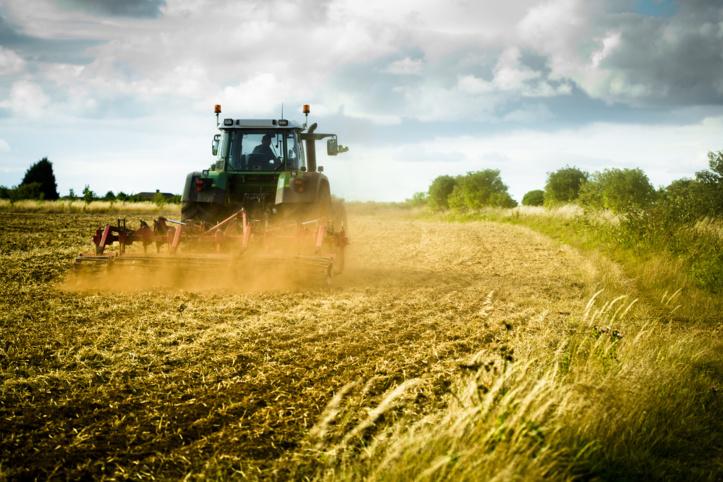 Les intrants agricoles sous exploités au Maroc