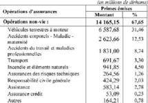 Avec des bénéfices en léger repli par rapport à 2008 : Le secteur des assurances affiche une croissance molle